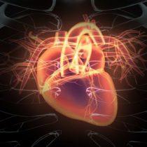 La sencilla prueba que te dice si tienes un corazón sano