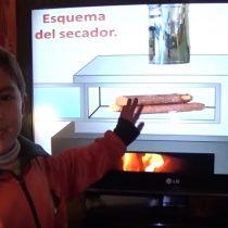 Niño de 6 años de Traiguén gana Concurso Einstein y viaja a Israel a conocer los archivos del genio de la física