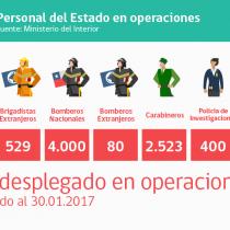 [GALERÍA] Infografía explica despliegue del gobierno en emergencia forestal