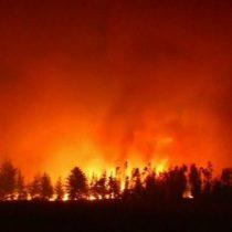 [VIDEO] Así son los peores incendios forestales de la historia de Chile