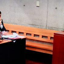 La condena al diputado Gaspar y la desconcertante lógica de AndrónicoLuksic