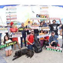 Con Festival de las Artes y Rockódromo, Consejo de la Cultura lanza calendario de verano en todo Chile