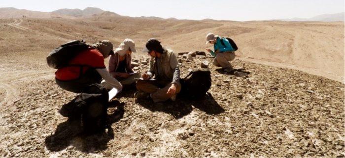 Prospección-arqueológica
