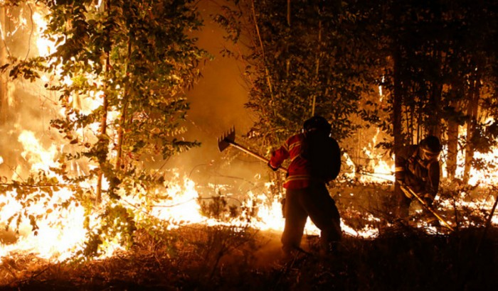 Caso incendios: el round entre las empresas eléctricas y el fiscal Arias