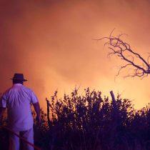 En prisión preventiva quedó la imputada por incendio forestal de Pelluhue