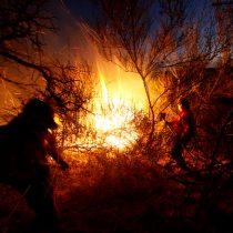 Joven es detenido tras dejar inconsciente a bombero que lo sorprendió prendiendo fuego en Ercilla