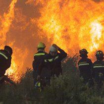 [Fotos] Incendio en Pumanque se convierte en el más catastrófico de los últimos 50 años