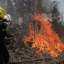 Chile pide apoyo a otros países para combatir peores incendios en su historia