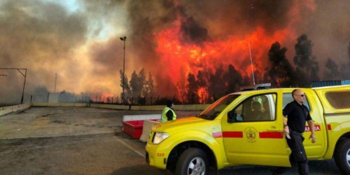 Incendio forestal en Camino la Pólvora en Valparaíso se encuentra controlado