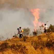 Chile en llamas: US$170 millones ya cuesta sólo al sector agrícola