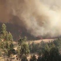 [VIDEO] El registro de las llamas que continúan afectando a Navidad: van 16 casas destruidas