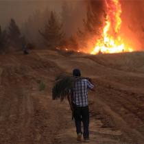 Reporte de Conaf indica que 3.066 incendios forestales han afectado al país desde el inicio de la temporada