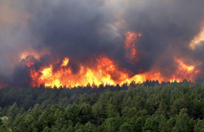 BID advirtió en 2015 sobre debilidades normativas para enfrentar catástrofes