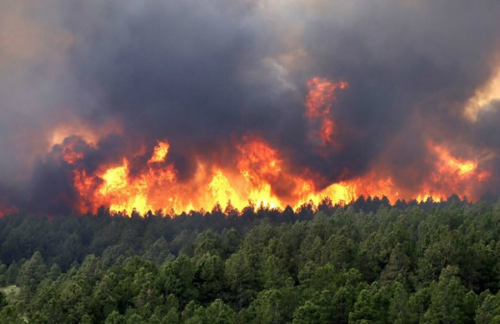 Fiscalía detiene a sujeto responsable de iniciar foco de incendio en La Araucanía