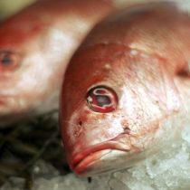 Por qué comer pescado puede ser menos saludable con el aumento de las temperaturas en el planeta