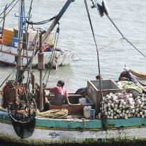Consejero Zonal de Pesca de Aysén sale en defensa de Patricio Walker por caso Fipes: