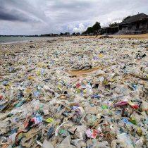 La epidemia que amenaza la paradisíaca isla de Bali