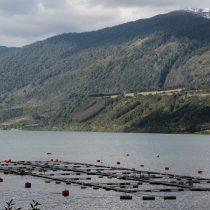Argentina promulga histórica ley que prohíbe la cría de salmones en la Patagonia