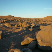 Investigaciones científicas en el desierto de Atacama podrían ayudar a la agricultura a enfrentar la sequía