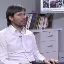 """Rodrigo Wagner y su frustración con el debate sobre el crecimiento: """"La productividad no es un tema de derecha e izquierda"""