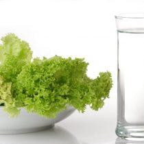 Dieta que imita el ayuno reduciría factores de riesgo cardiovasculares