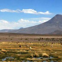 «La fe mueve fronteras»: un libro sobre evangélicos entre Chile y Bolivia