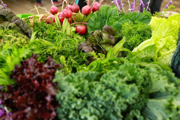 Las propiedades de cuatro verduras orgánicas que debes consumir esta temporada