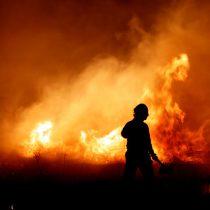 Organizaciones sociales denuncian a empresas por incendios forestales