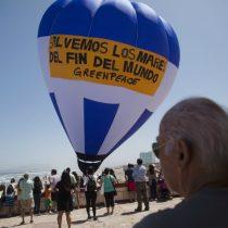 Greenpeace lanza campaña mundial para la protección de los mares australes de Chile