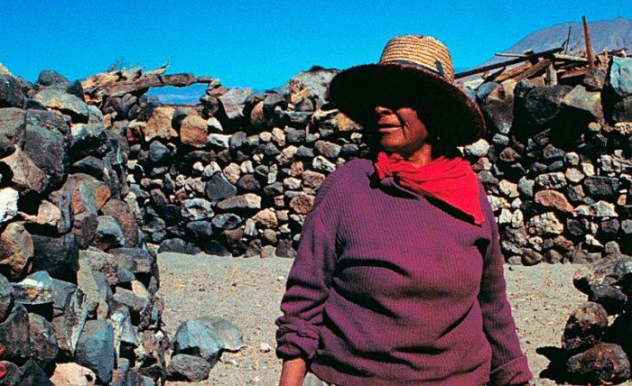 Día Internacional de la Lengua Materna: Cómo se revitaliza en Chile el idioma de los pueblos originarios