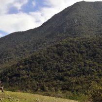 Santuarios de la naturaleza se suman a cierre temporal y preventivo por incendios forestales