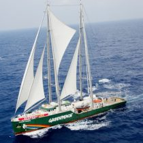 Barco de Greenpeace navega en Chile para pedir proteger el mar de salmoneras