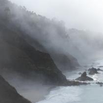 Una novela auspiciosa que se disipa como la niebla