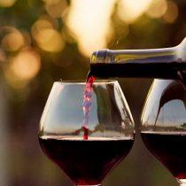 Presidente del Senado suspende compra de vino para los comedores