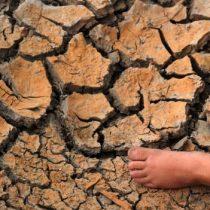 Tenemos US$8 billones para defender el clima