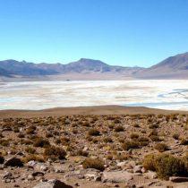 Experta de la NASA estudia similitudes del espacio con la altitud y ambiente extremo del desierto chileno