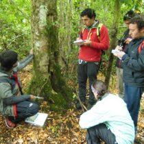 Jóvenes latinoamericanos descubren en Chile otra manera de aprender ciencia
