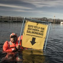 Greenpeace protesta para llamar la atención por contaminación de industria salmonera: