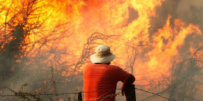Incendios forestales: ¿aprendimos la lección?