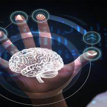 Sala de Neurociencias del MIM: Un paseo por la mente para reflexionar sobre metodologías eficientes de aprendizaje