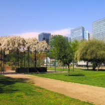 """Encuentro escolar """"Descubriendo la biodiversidad olvidada en nuestra ciudad"""" en MBVM"""