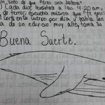 """Menor que jugó a la ballena azul: """"Seguí por miedo a que le hicieran algo a mi familia"""