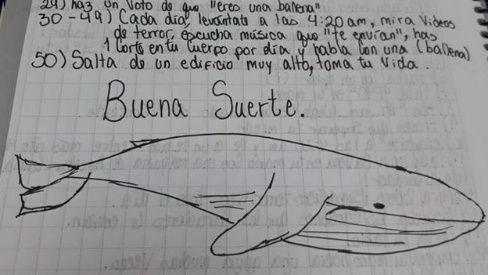 """Menor que jugó a la ballena azul: """"Seguí por miedo a que le hicieran algo a mi familia"""""""