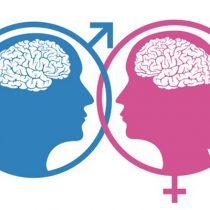 Cerebro femenino vs. masculino: ¿tienen capacidades diferentes?