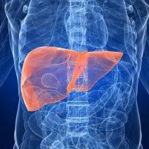 Hepatocarcinoma: radiografía a una patología olvidada