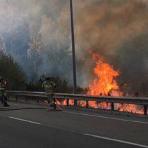 [VIDEO] Conaf declara Alerta Roja por incendio forestal en Valparaíso