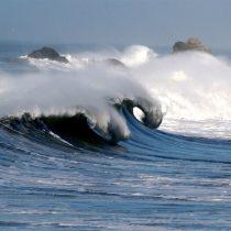 Alerta ambiental: la Unesco avisa que los océanos podrían dejar de absorber el CO2 y aumentar el calentamiento global