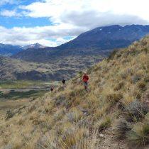 Programa de Donaciones Ambientales de Patagonia repartirá 100 mil dólares