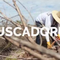 [VIDEO] Los familiares que se convirtieron en expertos rastreadores en busca de los restos de miles de desaparecidos en México