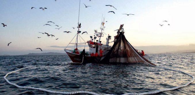 Pesca artesanal en la mira: Contraloría Regional de Valparaíso investiga irregularidades en el FAP por $4 mil millones